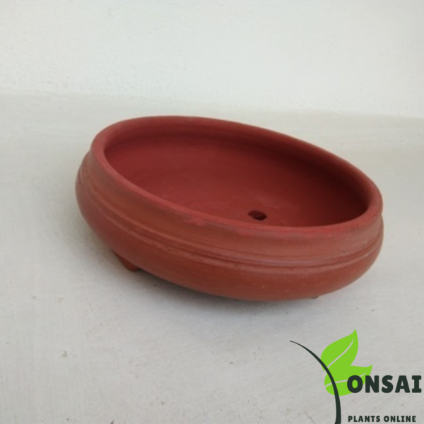 Get affordable and beautiful clay bonsai pots