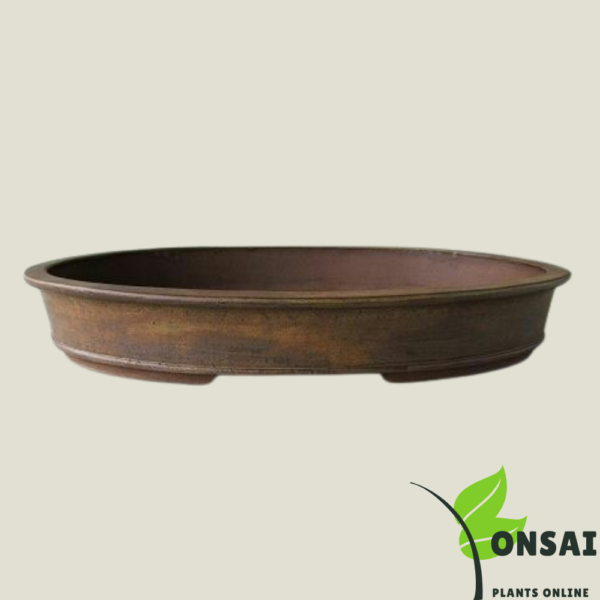 Get beautiful Ceramic bonsai pots for indoor and outdoor plants